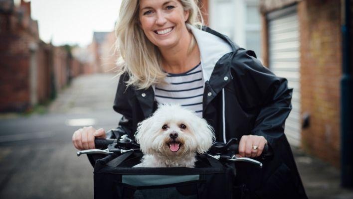 Bästa Cykelkorgen för Hundar 2021 - Stort test av Hundcykelkorgar